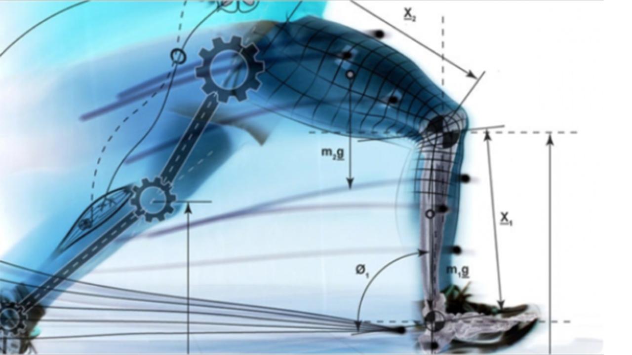 biomeccanica del movimento